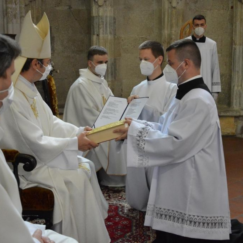 Dvanásť bohoslovcov bolo ustanovených pre službu lektorov a akolytov
